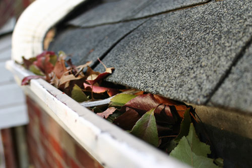 clean-gutters-seattle-wa