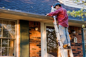 roof-cleaning-company-renton-wa