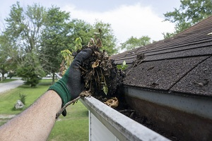 roof-cleaning-kent-wa