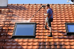 roof-cleaning-renton-wa