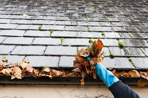 roof-moss-removal-kent-wa