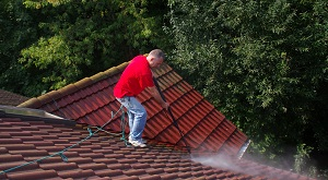 roof-moss-removal-wallingford-wa